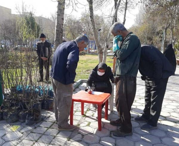 توزیع نهال رایگان به شهروندان در بوستان ها